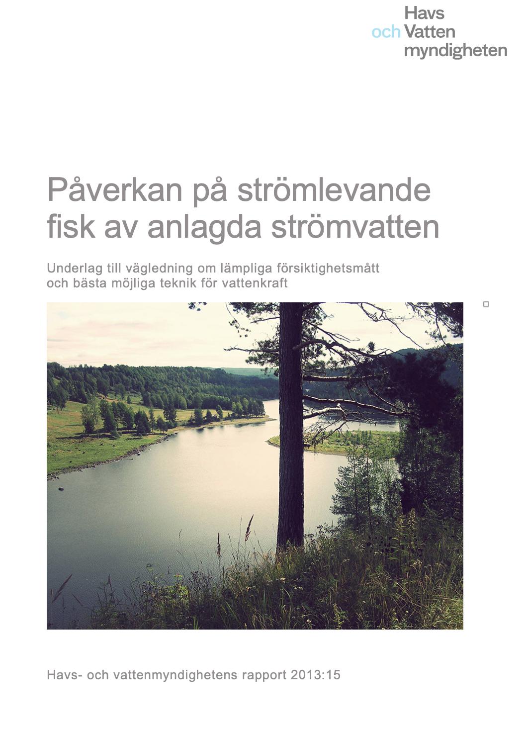 Rapport, Havs- och vattenmyndigheten